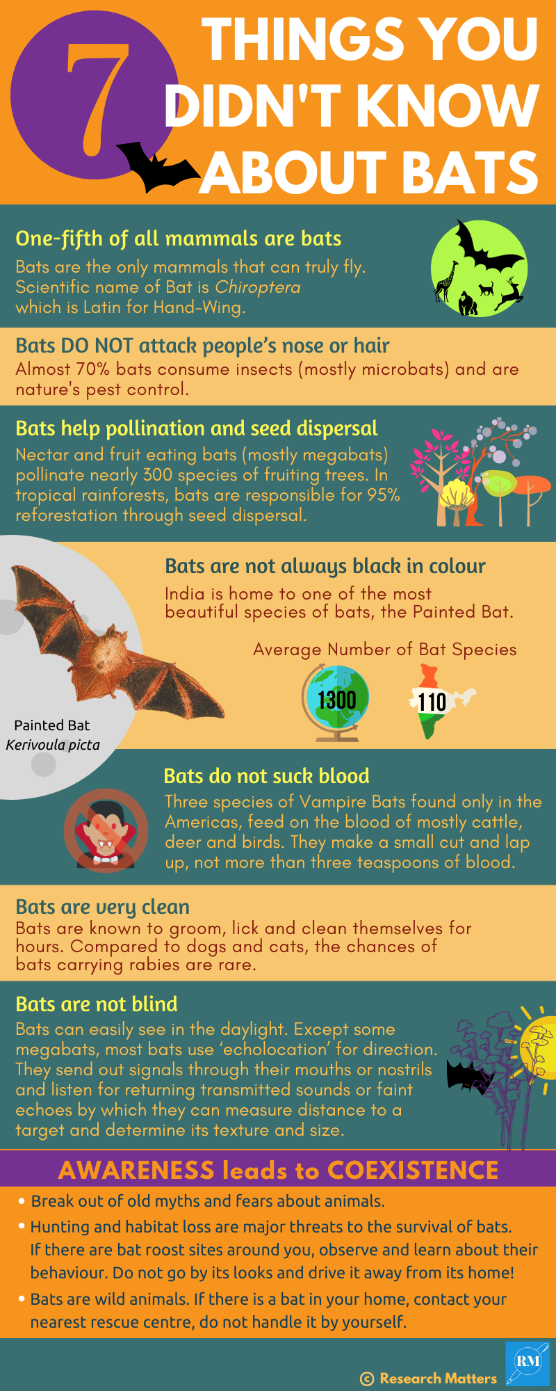 7 Amazing Things you didn't know about Bats