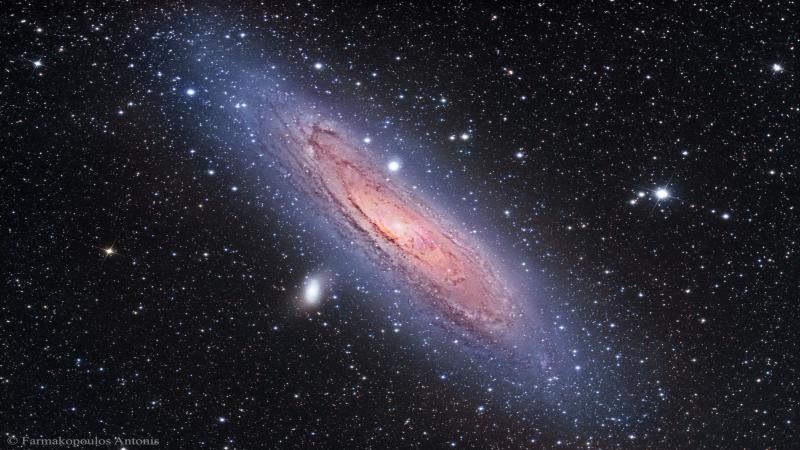 Molecular hydrogen making up galactic discs come in two forms
