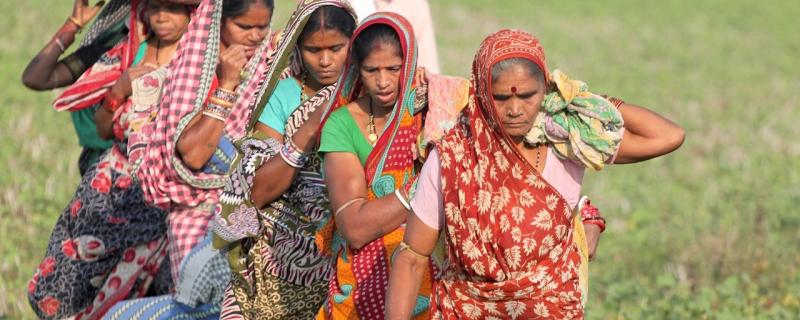 Too heavy a burden? Onus of farm labour on women may be contributing to malnourishment in India, says study